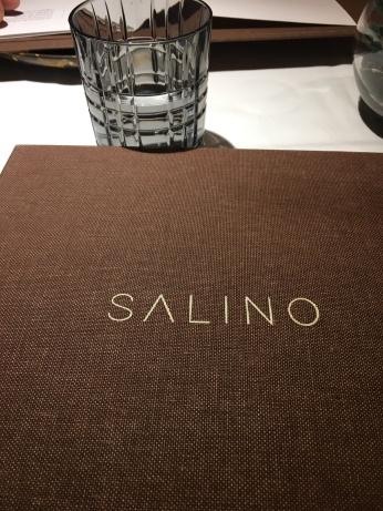 salino (1)